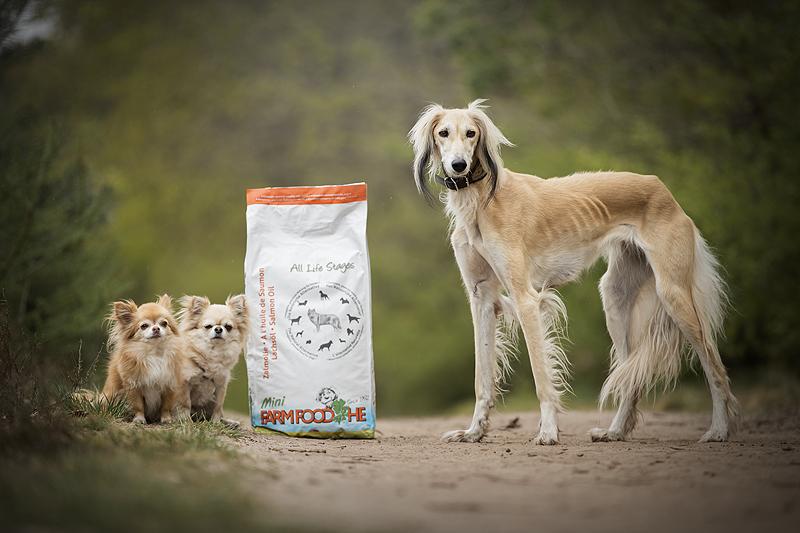 farm food farmfood he high energy brokken brok geperst geperste schaap zalmolie mini chihuahua kleine hondjes honden hond grote hond moeilijke eter mager dik ervaring review hondenblog blog blogger Sanne mik pet studio belle fae