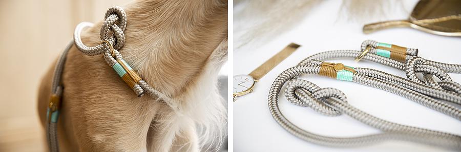 give away pet studio win actie belle fae bedrijven promotie winnen gratis halsband riem voer snack hond honden hondenblog handgemaakt halsbanden touw design jachtlijn touwproduct
