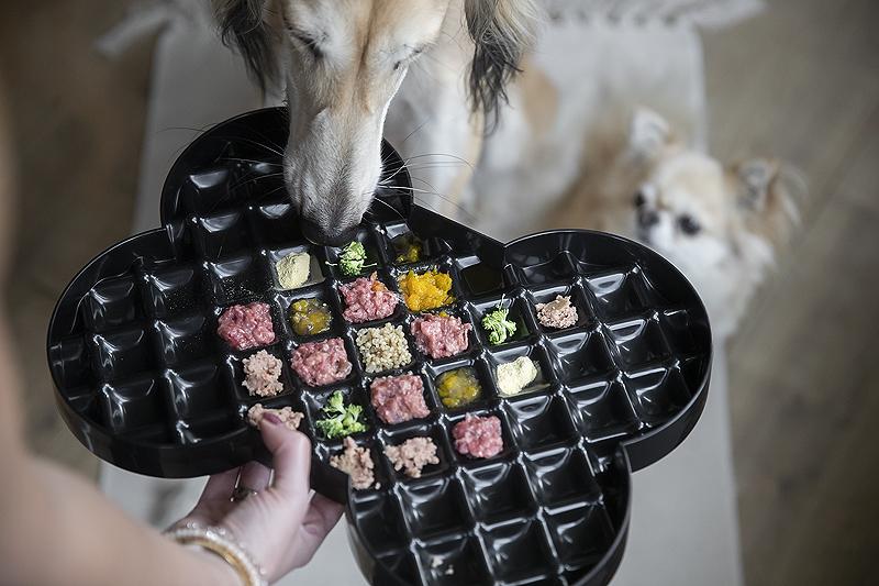 slowfeeder lickimat slodog feeder plate review tips hond eet niet moeilijk etende hond lastig mager
